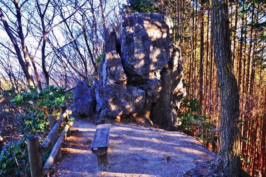 奥武蔵 棒ノ折山(12.01.07): ひまじん
