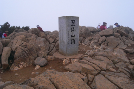 20100915029